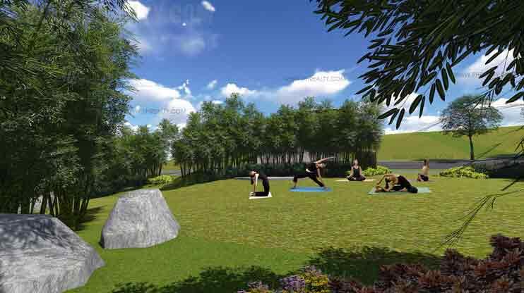 Pahara - Yoga Lawn